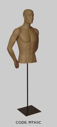 Male Torso with Head & Arm Pose C